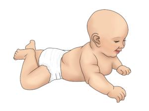 Your Baby's Milestones